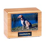 Pet Memorials with Photo Urn