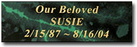 Green Marbleized Nameplate for Pet Urns